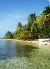 Playa Salvaje Dominicana