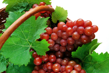 Wine grapes with leaves in basket - close-up
