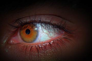 Eyes Hazel