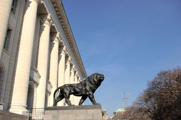 lion statue in front