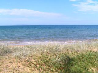 grassy duned beach
