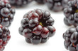 Isolated closeup of a bunch of fresh blackberries