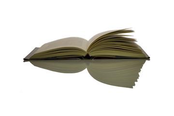 libro con pagine al vento