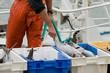 marin pêcheur3