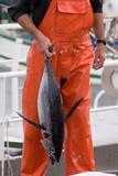 marin pêcheur2 poster