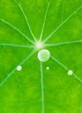 geometric drops poster