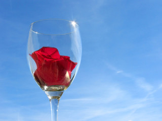 Wineglass with rose flower on sky background