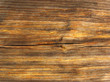 Beautiful wood texture close-up