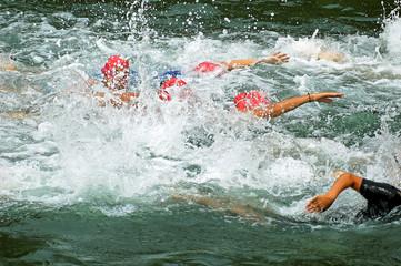 natation game