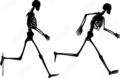 Skeletons running