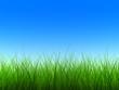 green grass thin