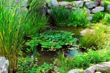 Fototapety Pond landsaping