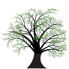 beautiful abstract vector tree design