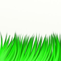 painted grass