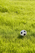 toy football on the grass