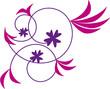 3 fleurs violettes et roses
