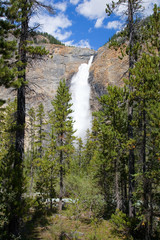 Takkakaw Falls in the Canadian Rockies