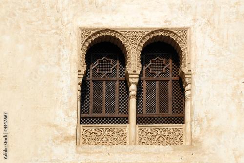 The Alhamvbra in Granada Spain