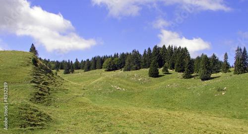 paysage de moyenne montagne - 4352289