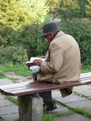 elderly man sitting on a park bench reading a book