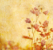 Leinwanddruck Bild grunge floral background with space for text or image