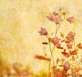 Fototapeta kwiaty - liści - Tła