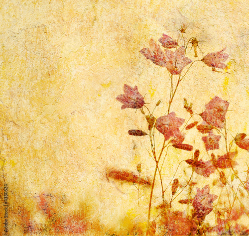 Leinwandbild Motiv grunge floral background with space for text or image