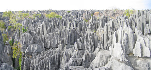 Another large view on the top, Tsingy of Bemaraha Park