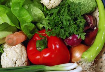 vegetables variety green salat carrot lettuce pepper onion