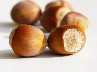 brown hazelnuts