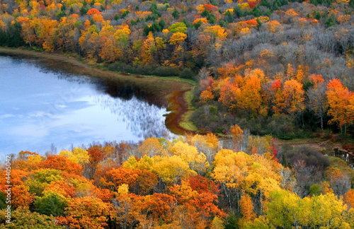 Bright Autumn Scene