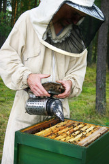 Man in a beekeepers outfit