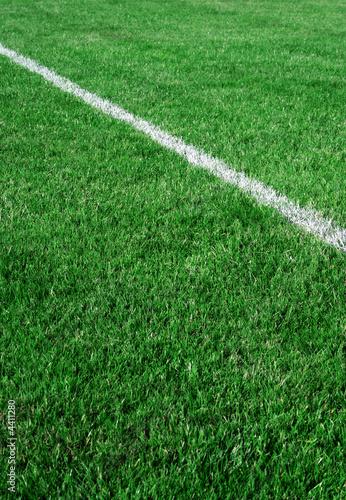 Pelouse terrain de football de bernard bailly photo libre for Pelouse tarif