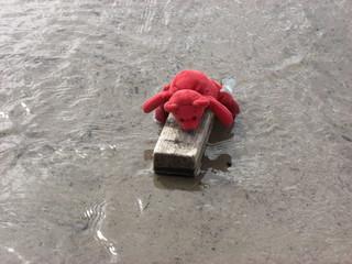 Toy Raft