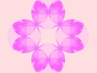 fiore simmetrico rosa