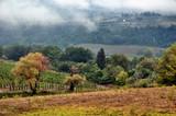 Mist over autumnal Tuscan hills poster