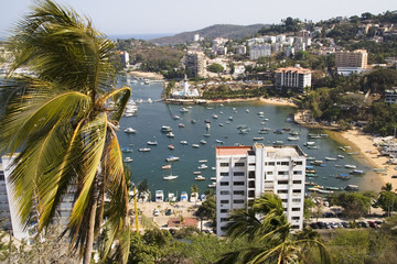 Busy Harbor in Acapulco