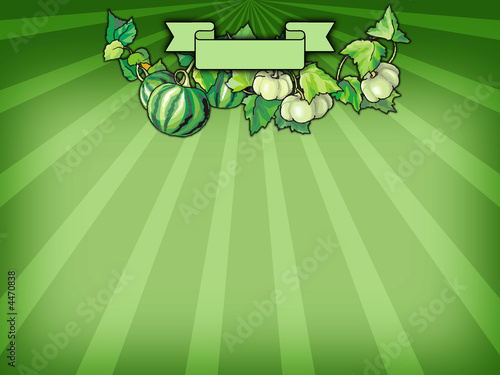 Thanksgiving background with pumpkins and banner for your text