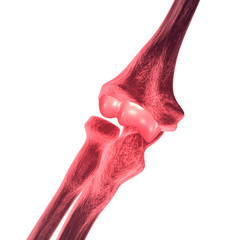 Elbow Bone Pain