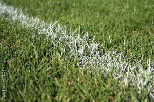 Pelouse de terrain de foot photo libre de droits sur la for Pelouse tarif