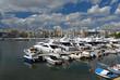 The Zea marine in Piraeus