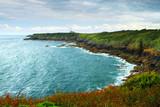 Atlantic coastline in Brittany, France poster