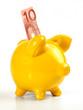 Sparschwein / gelb - 10 Euro