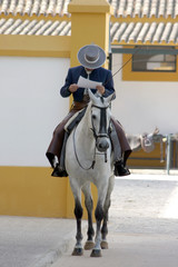Andalusian horseman