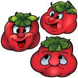 Three Tomatoes - High detailed cartoon illustration poster