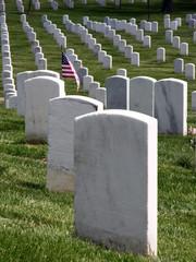 Arlington National Cemetery_Fallen Heroes