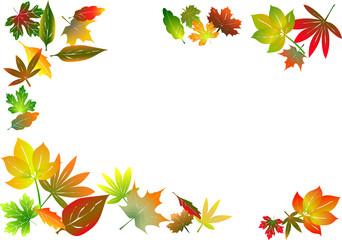 Encadrement de feuilles mortes