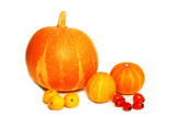 Pumpkins and rose hips poster
