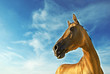 Golden horse of Turkmenistan 3
