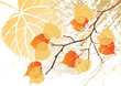 September leaves background